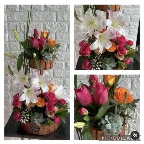 G-16 Flores Parisina